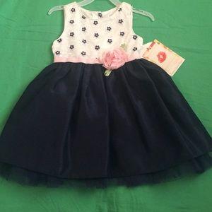 Sweet Heart Rose Fancy Dress 3T